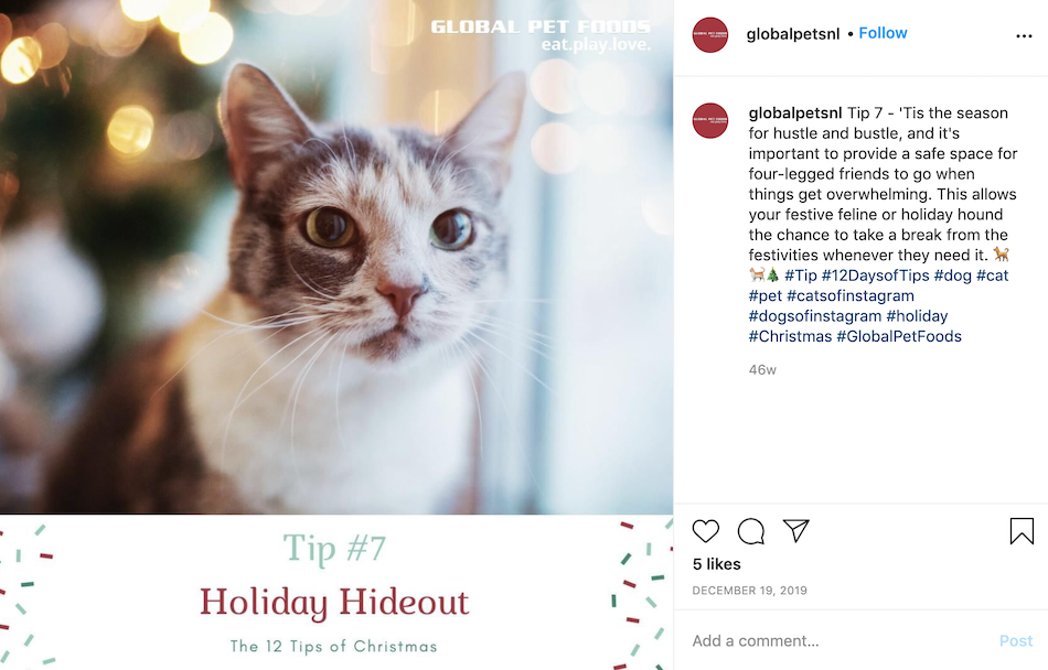 One holiday instagram example post is to provide helpful tips for the 12 days of christmas.